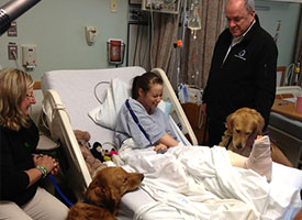 LCC Comfort Dogs go to Boston