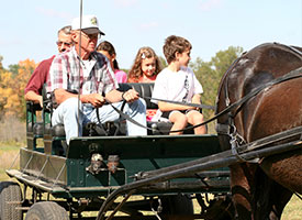 Saxon Lutheran Fall Festival set for Oct. 12