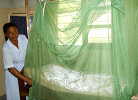 Lutheran Malaria Initiative meets $125,000 challenge grant