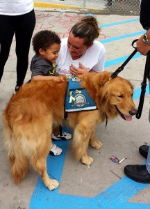 """Luther,"" a ""comfort dog"" from Lutheran Church Charities in Addison, Ill., visits Ferguson, Mo., on Aug. 16, a week after the shooting that ignited violent demonstrations in the North St. Louis County community. (James Kirschenmann)"