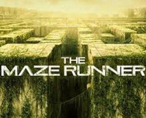 maze-IN