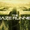 maze-RPT