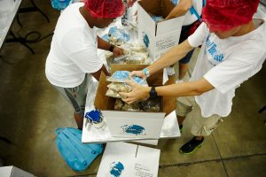 Gathering participants place packed meals into boxes to be distributed both locally and globally to people in need.