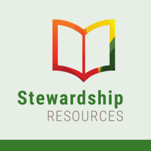 Newsletter-Stewardship-Bulletin-Feature-1024x684