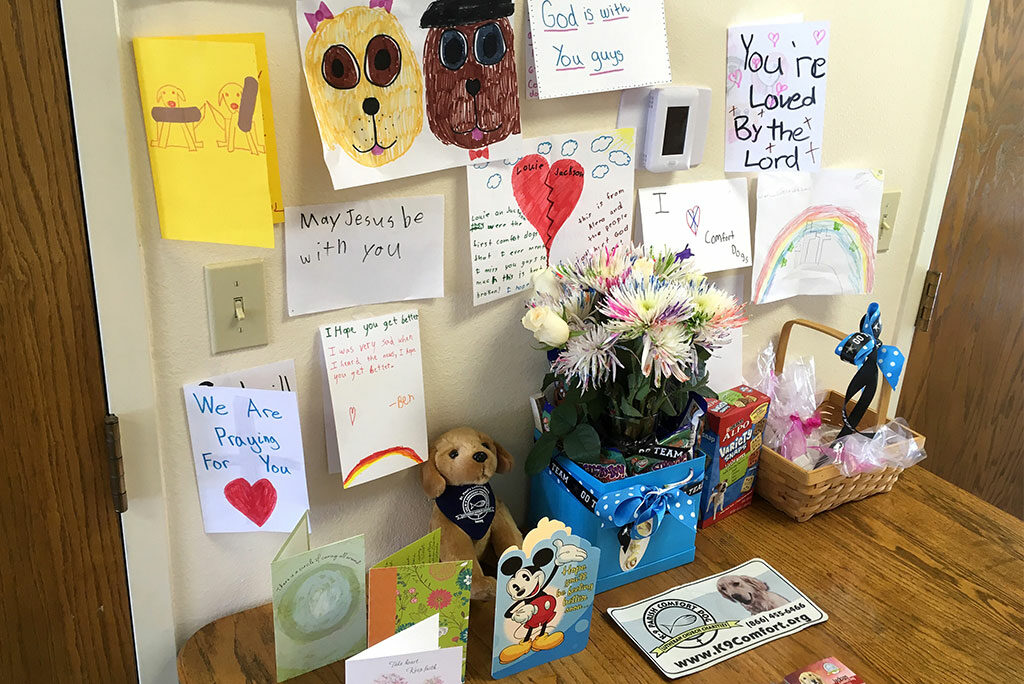 Immanuel Lutheran Church mounts a display of notes of encouragement received after the Aug. 13 shooting that injured several members and the congregation's two comfort dogs. (Immanuel Lutheran Church)