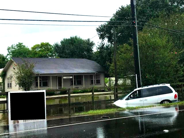 Scenes of devastation near the author's home north of Houston.