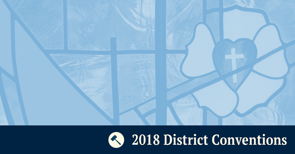 2018 District Conventions